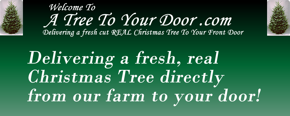 Buy a Real Christmas Tree Online